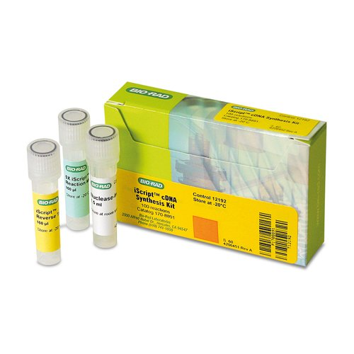 />PCR and Realtime PCR Reagents