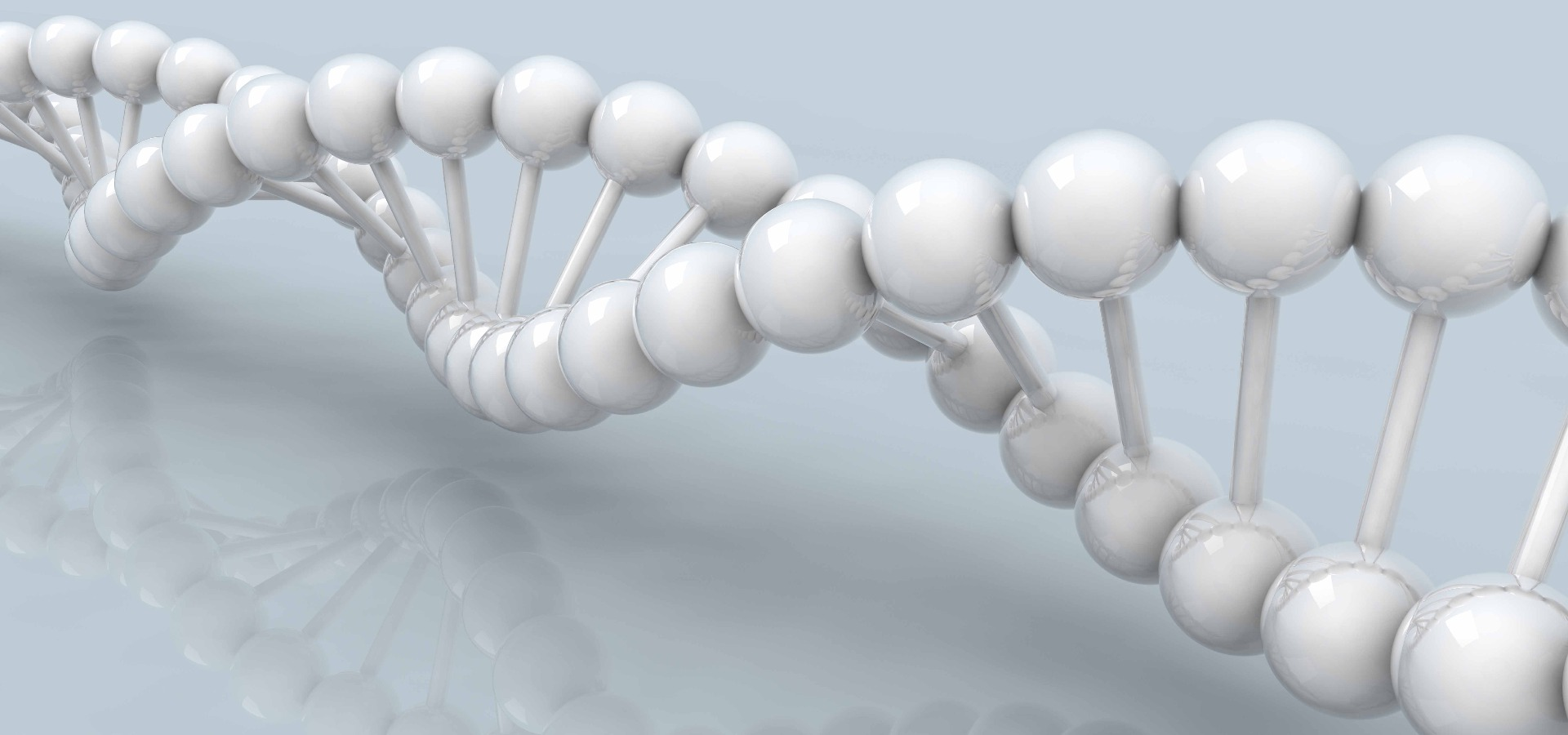 Everything you Need for RNA, DNA or Protein Purification